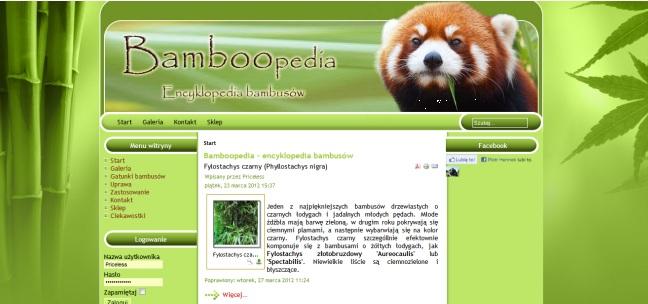 Zapraszamy do Bamboopedii – internetowej mini encyklopedii bambusów:)