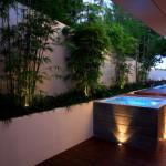 Garść bambusowych inspiracji – Bambus w donicy