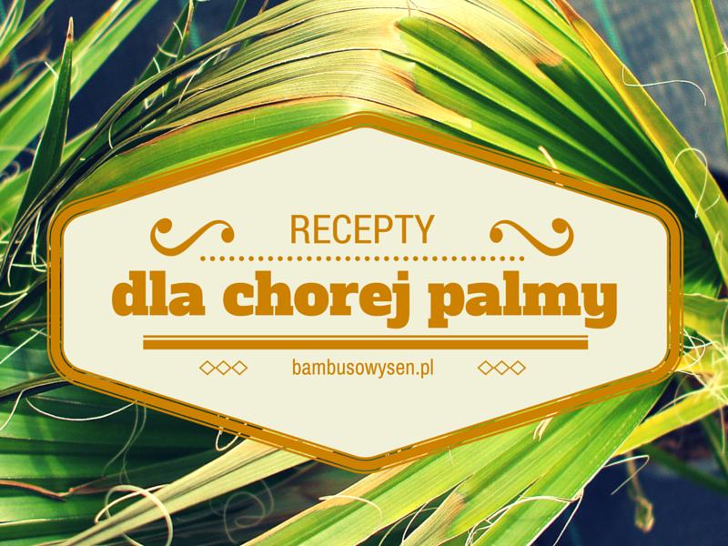 recepty na choroby palm