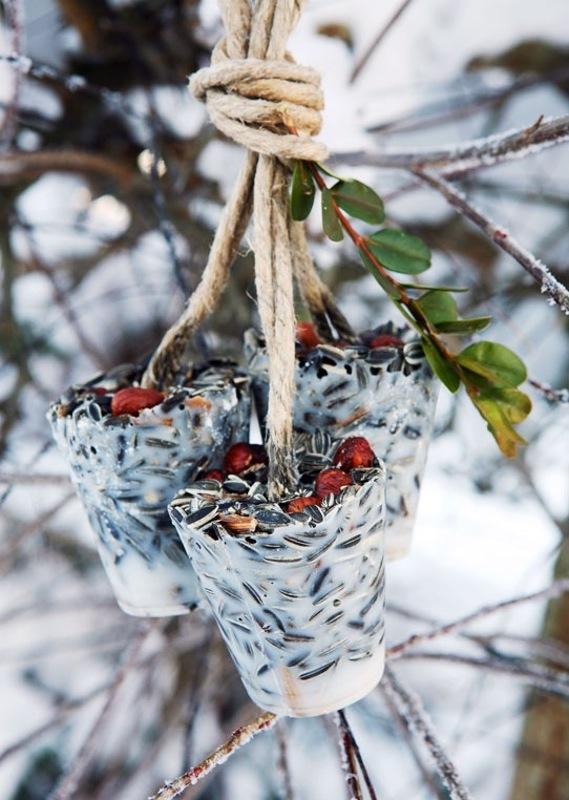 dokarmianie ptaków karmnik