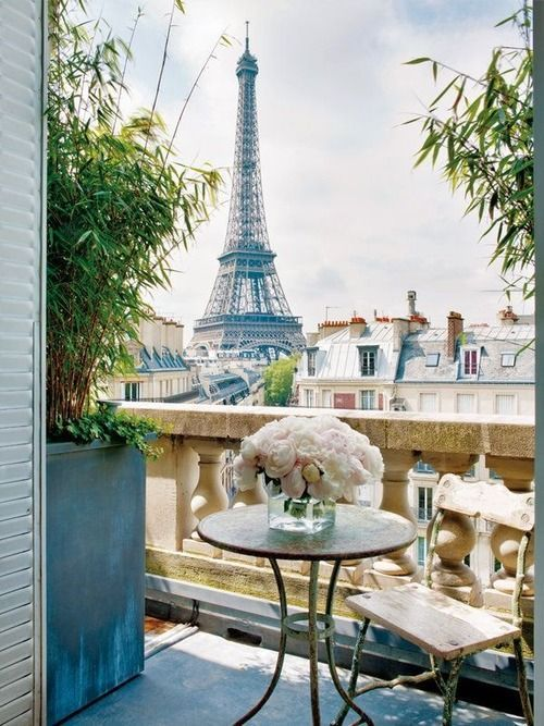 bambus na mały balkon