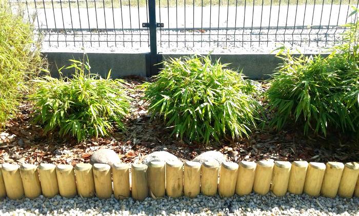 stanowisko dla bambusa