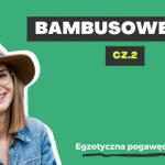 Bambusowe Q&A cz.2 | Egzotyczna Pogawędka #33