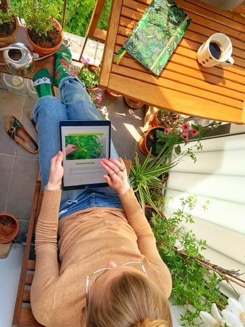 Praca nad bambusowym ebookiem