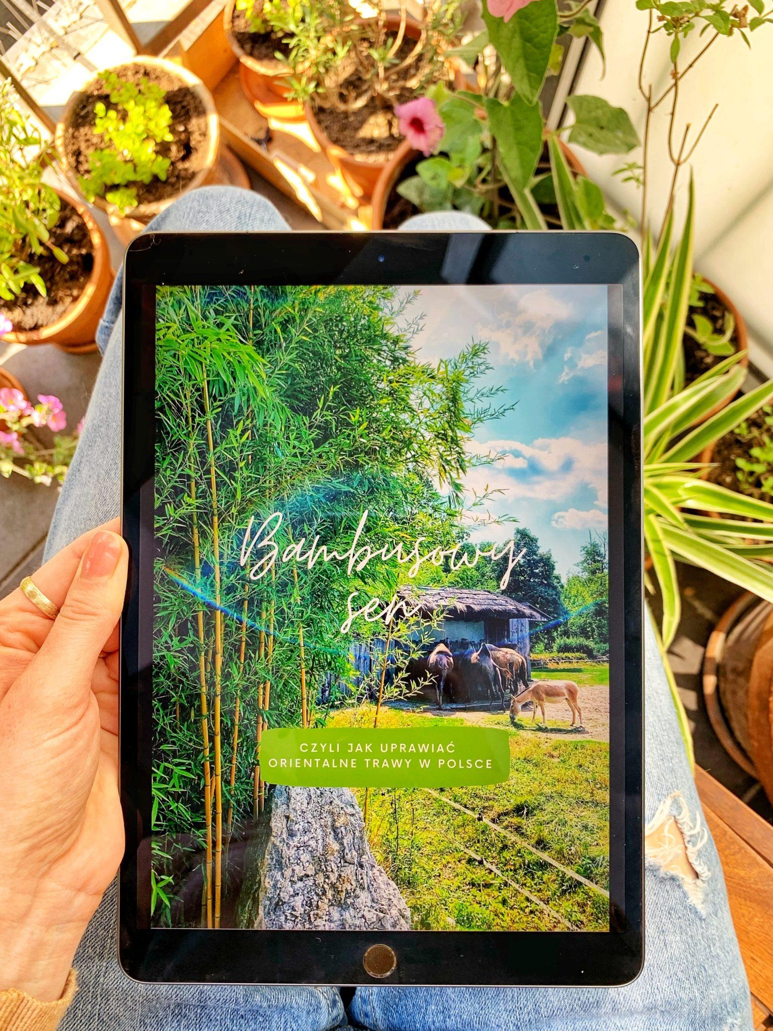 Bambusowy Sen ebook okładka