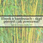 Ebook o bambusach – skąd pomysł i jak powstawał?  Egzotyczna Pogawędka #17