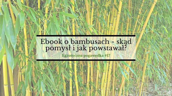 Ebook o bambusach – skąd pomysł i jak powstawał?| Egzotyczna Pogawędka #17
