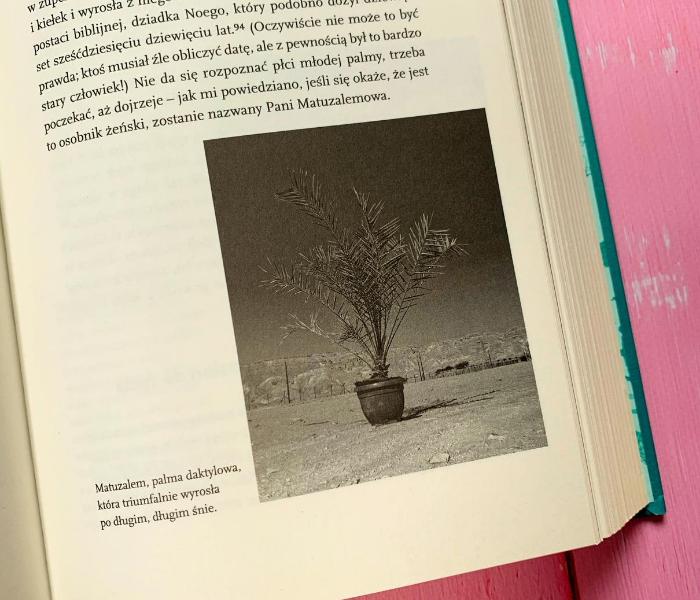 Jane Goodal, Mądrość i cuda świata roślin