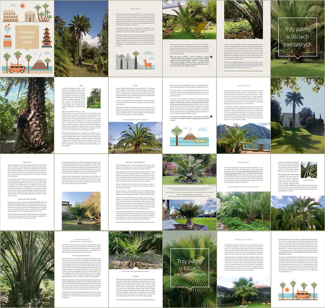 podgląd stron ebooka o palmach mrozoodpornych